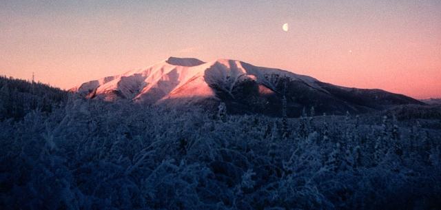 Mount Haldane in winter